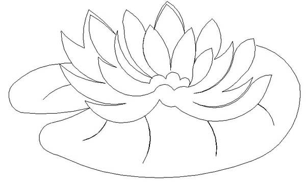 Water lily pad coloring page