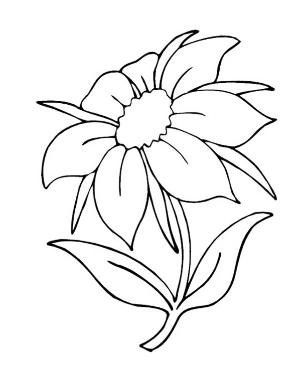 Nature, : Charming Flower in Nature Coloring Page