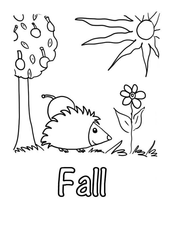 Autumn, : Autumn Season Picture Coloring Page