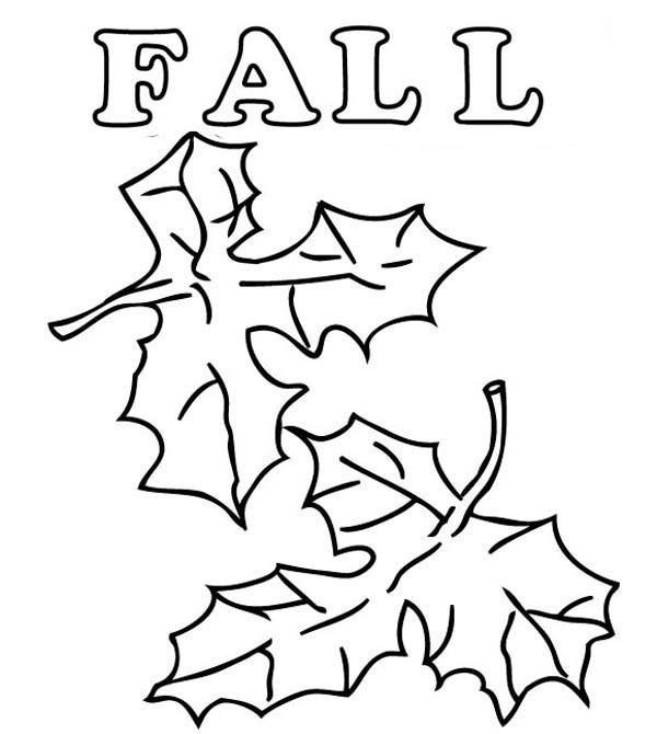 How to Draw Autumn Leaves Coloring Page | Color Luna