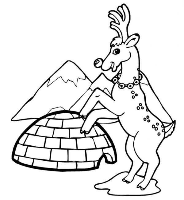 Reindeer and Igloo on Winter Season Coloring Page | Color Luna