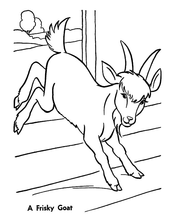 Baby Goat Playing Under Orange Tree Coloring Pages | Color Luna