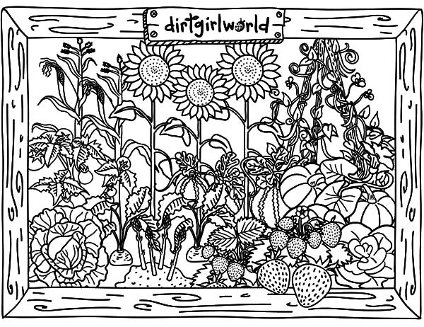awesome vegetable garden coloring pages - Garden Coloring Pages