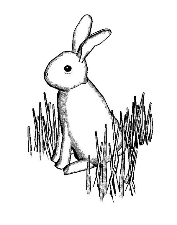 Bunny Rabbit Standing on Grass Coloring Pages Color Luna
