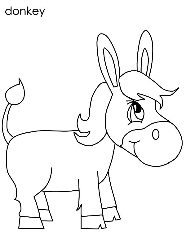 Mexican Donkey, Chibi Mexican Donkey Coloring Pages: Chibi Mexican Donkey Coloring Pages