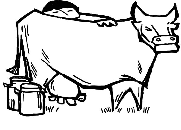 Chinese Farmer Milking Cow Coloring Pages