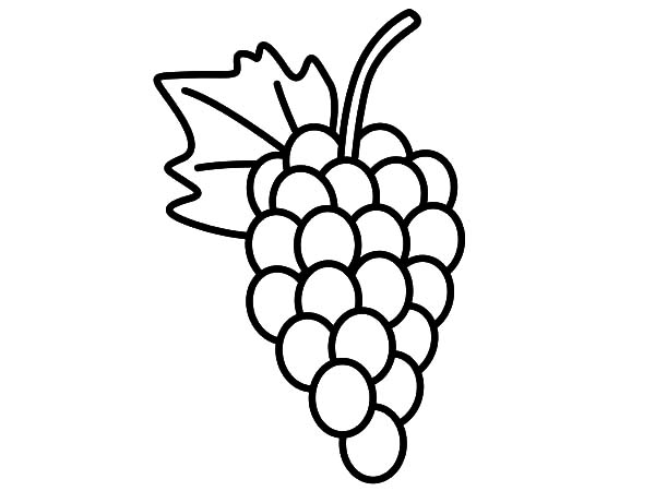 Delicious Fruit Grapes Coloring Pages Color Luna