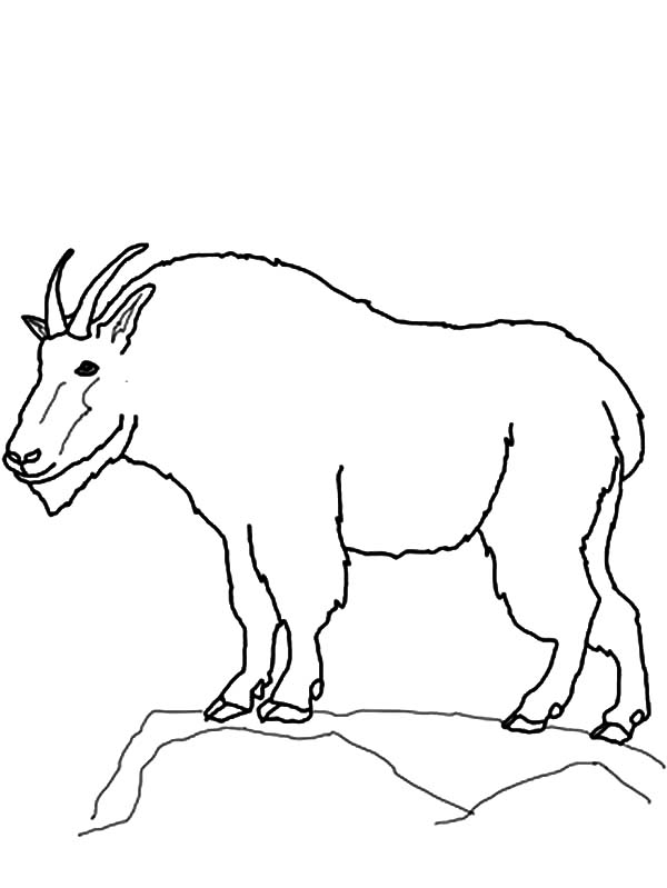drawing mountain goat coloring pages - Mountain Coloring Pages Printable