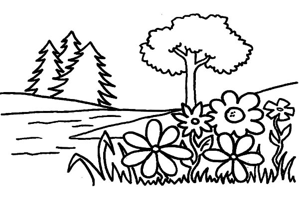 Free printable coloring pages part 22 for Flower garden coloring pages printable
