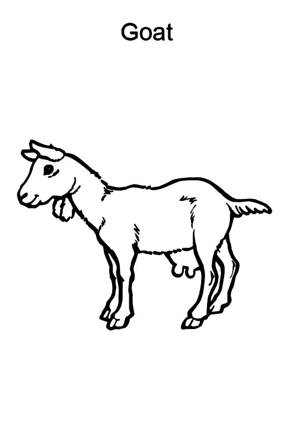 g for goat coloring pages - photo #12