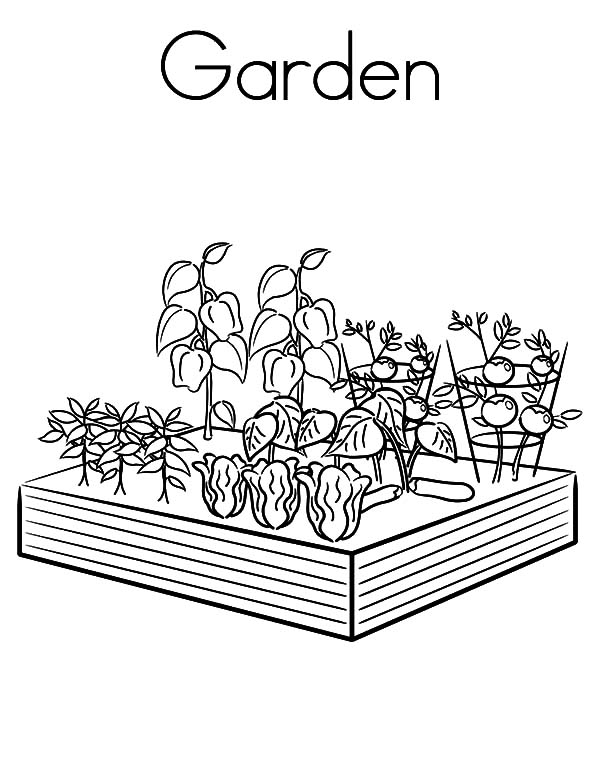 Garden, Garden Coloring Pages: Garden Coloring Pages