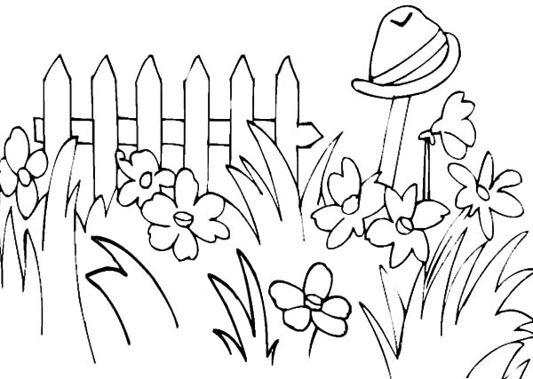 Garden Full Of Tall Grass Coloring Pages