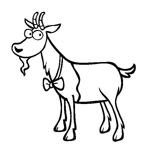 Goat, Goat Wearing Bow Tie Coloring Pages: Goat Wearing Bow Tie Coloring Pages