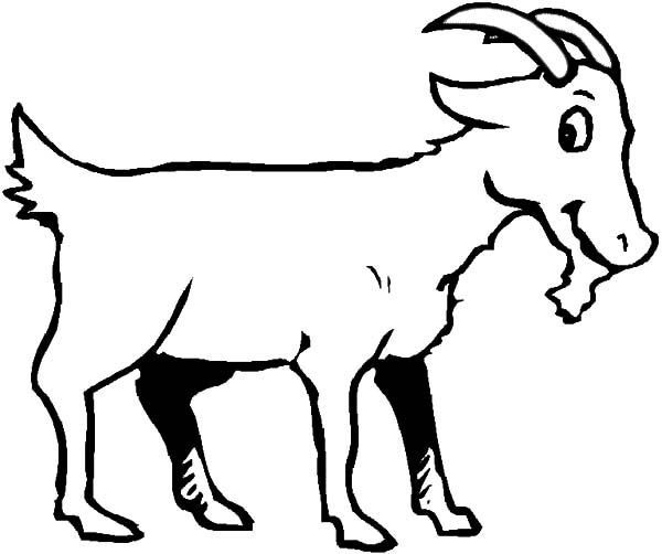 goat is smiling coloring pages - Coloring Page Goat