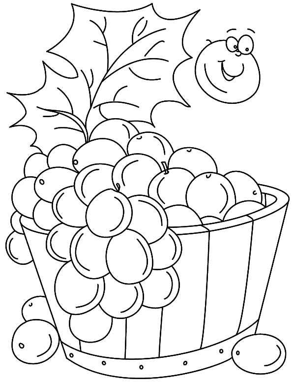 Grapes Bucket Coloring Pages