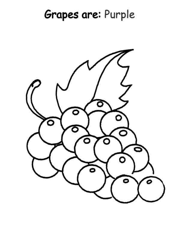 Grapes are purple coloring pages