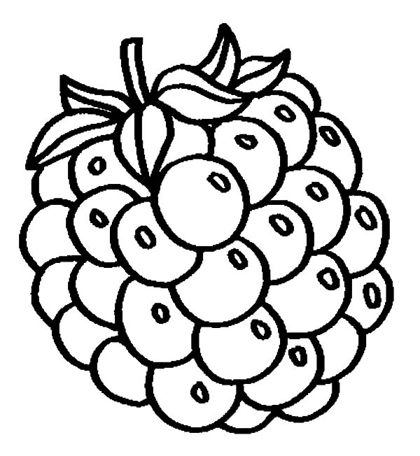 Grapes, Grapes Fo Fresh Juice Coloring Pages: Grapes fo Fresh Juice Coloring Pages