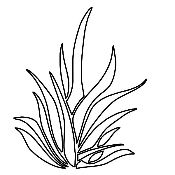 grass coloring pages - photo#19