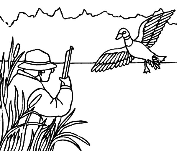 Mallard Duck Outline Coloring Pages Mallard Duck Outline