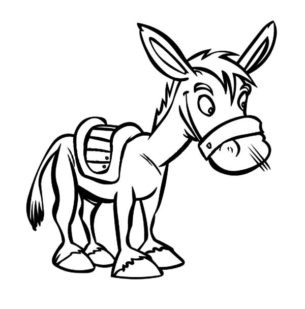 Mexican Donkey, Little Mexican Donkey Coloring Pages: Little Mexican Donkey Coloring Pages
