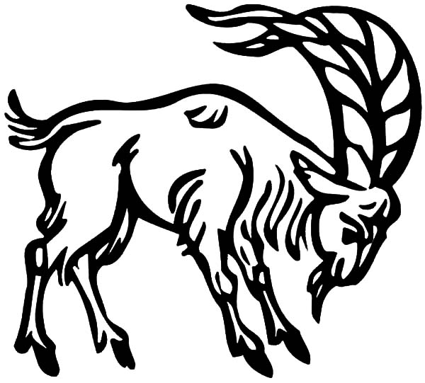 Goat, Long Horned Goat Coloring Pages: Long Horned Goat Coloring Pages