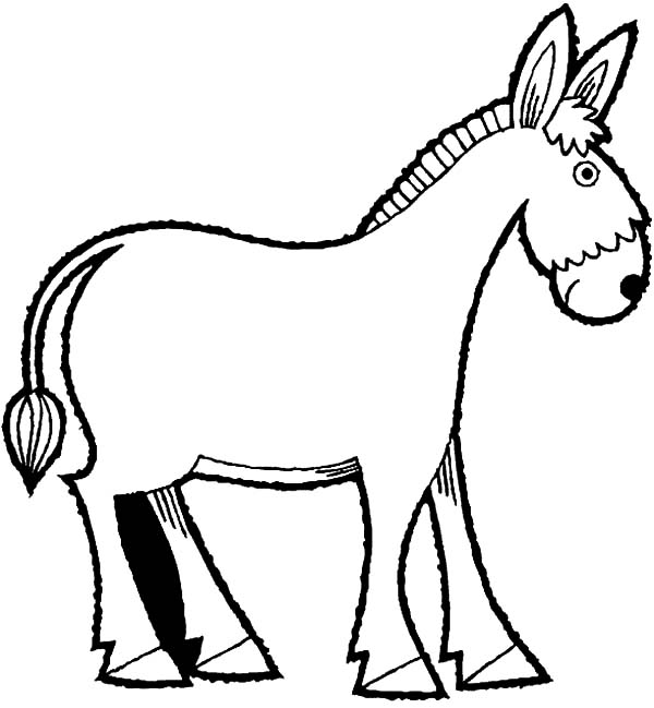 Mexican Donkey Coloring Pages for Kids Color Luna