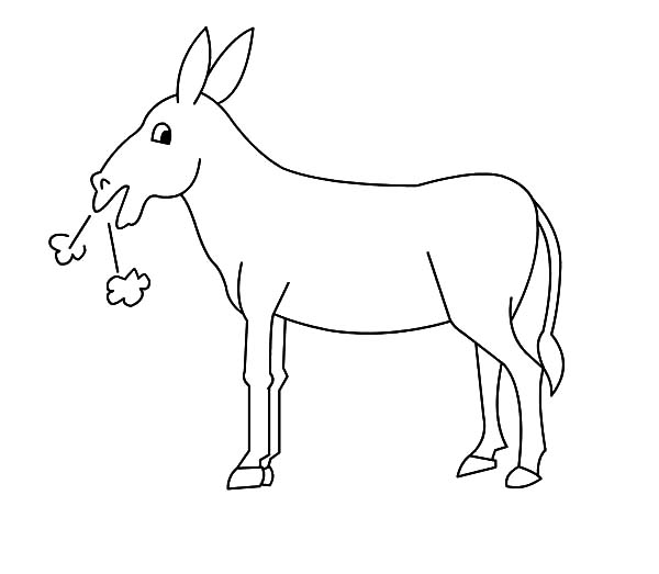 Mexican Donkey, Mexican Donkey Hard Breathing Coloring Pages: Mexican Donkey Hard Breathing Coloring Pages