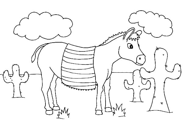 Mexican Donkey Stop Walking in Front of Cactus Coloring Pages
