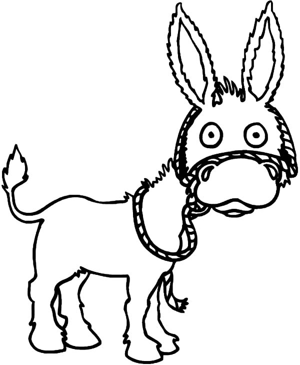 Mexican Donkey, Mexican Donkey Is Surprised Coloring Pages: Mexican Donkey is Surprised Coloring Pages