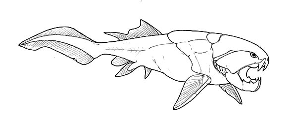 Dunkleosteus drawing online image for Fossil coloring pages