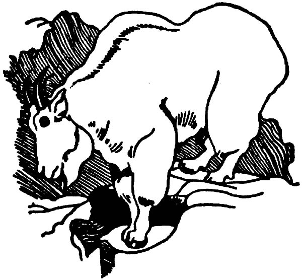 free coloring pages of mountain goat