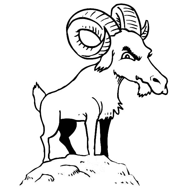 Mountain Goat, Mountain Goat Is Not Happy Coloring Pages: Mountain Goat is not Happy Coloring Pages