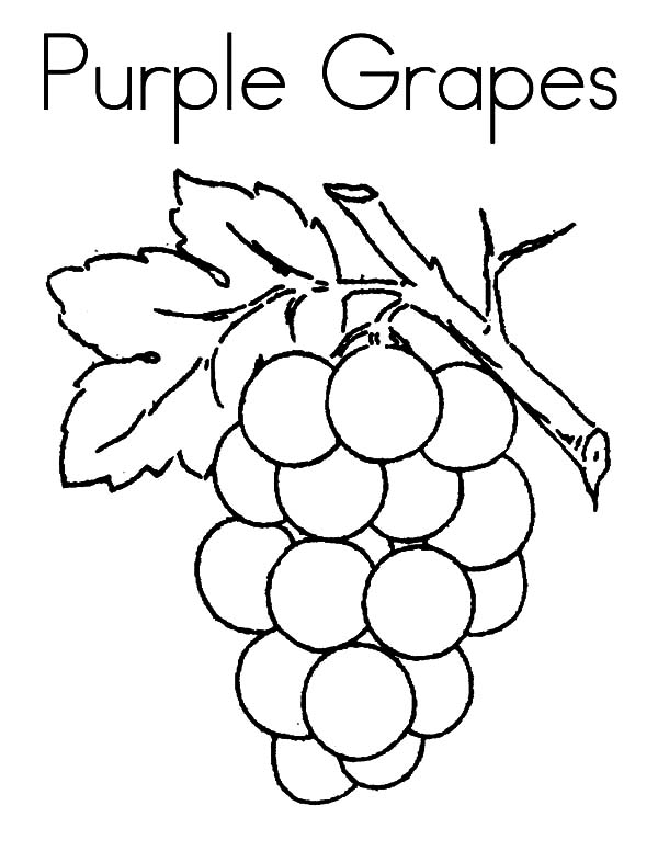 Purple Grapes Coloring Pages Color Luna