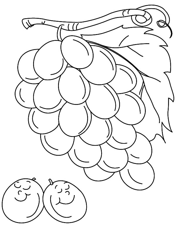 Two Grapes Sleeping Coloring Pages Color Luna