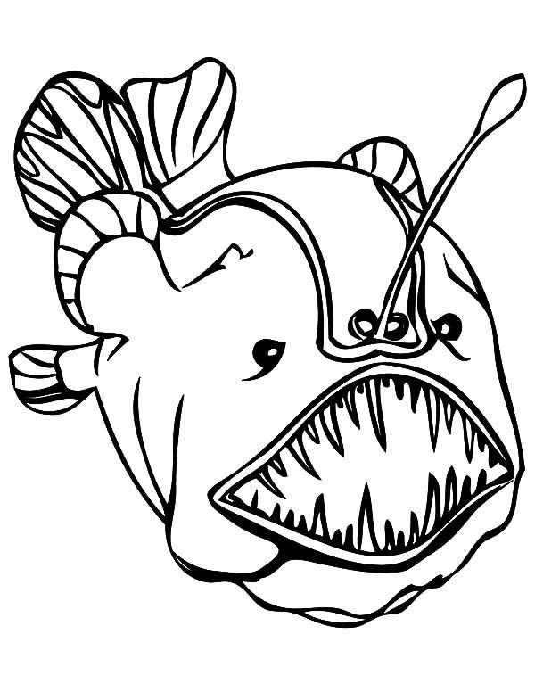 Monster Fish, Soccer: soccer