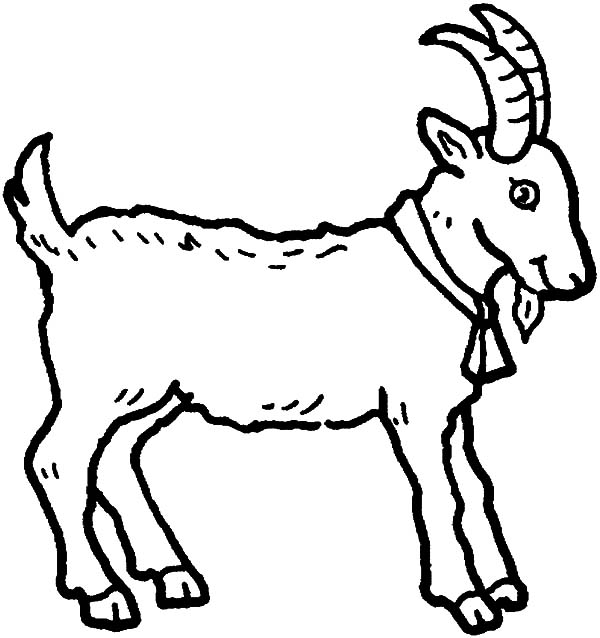 coloring pages of goat | Young Goat Coloring Pages | Color Luna