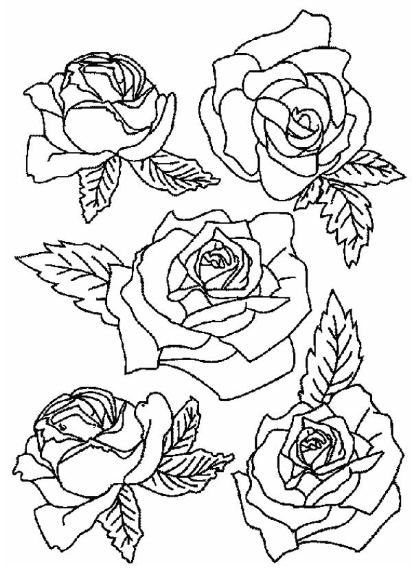 Free Printable Coloring Pages Part 228