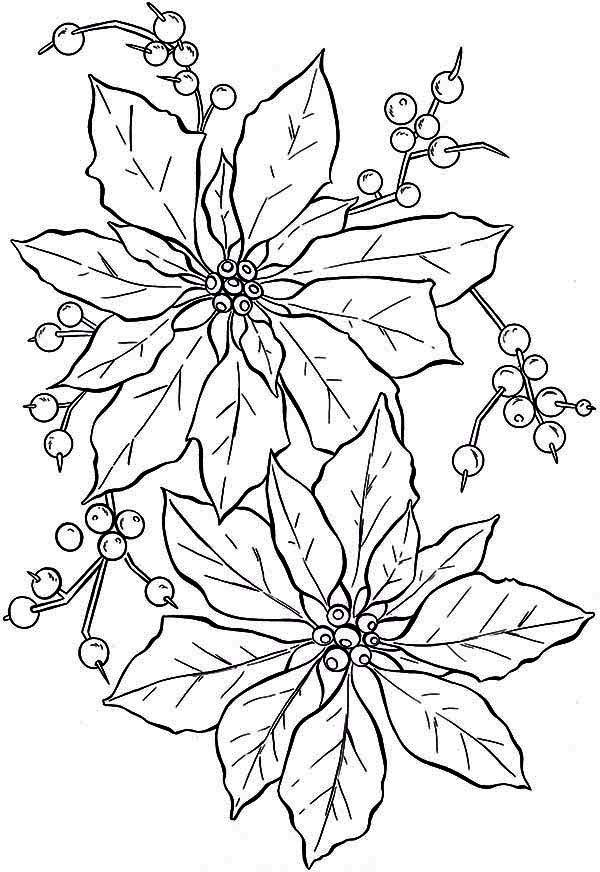beautiful poinsettia flower coloring page color luna free graduation clip art downloads free graduation clipart featuring animals