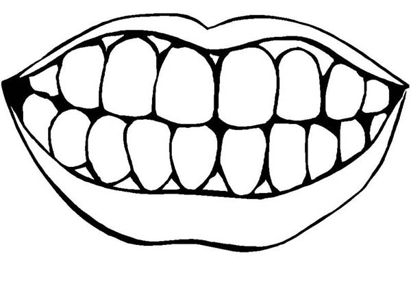 It is an image of Declarative Teeth Coloring Sheet