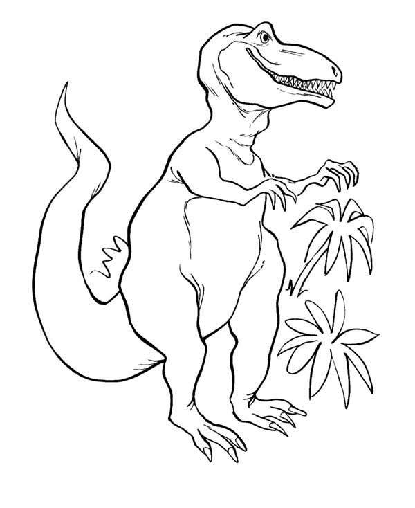Jungle Leaves Coloring Pages Coloring Pages
