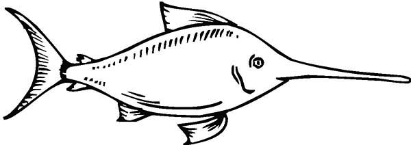 Swordfish Coloring Page For Kids Color Luna