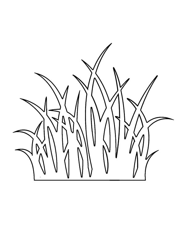 Grass Outline Coloring Pages